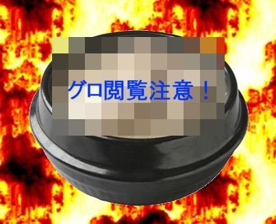 samuge3.jpg
